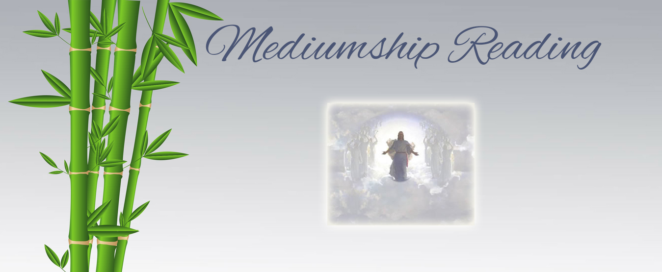 Mediumship Reading Treatment